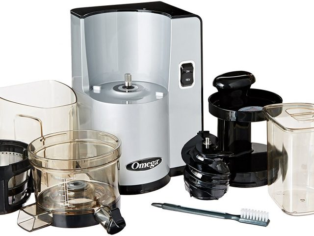 Guide to the Best Masticating Juicers and TOP 7 Reviews